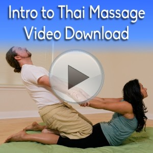 Intro to Thai Massage Workbook Video Download